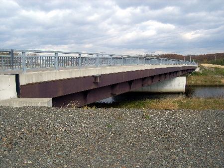 1603sakura